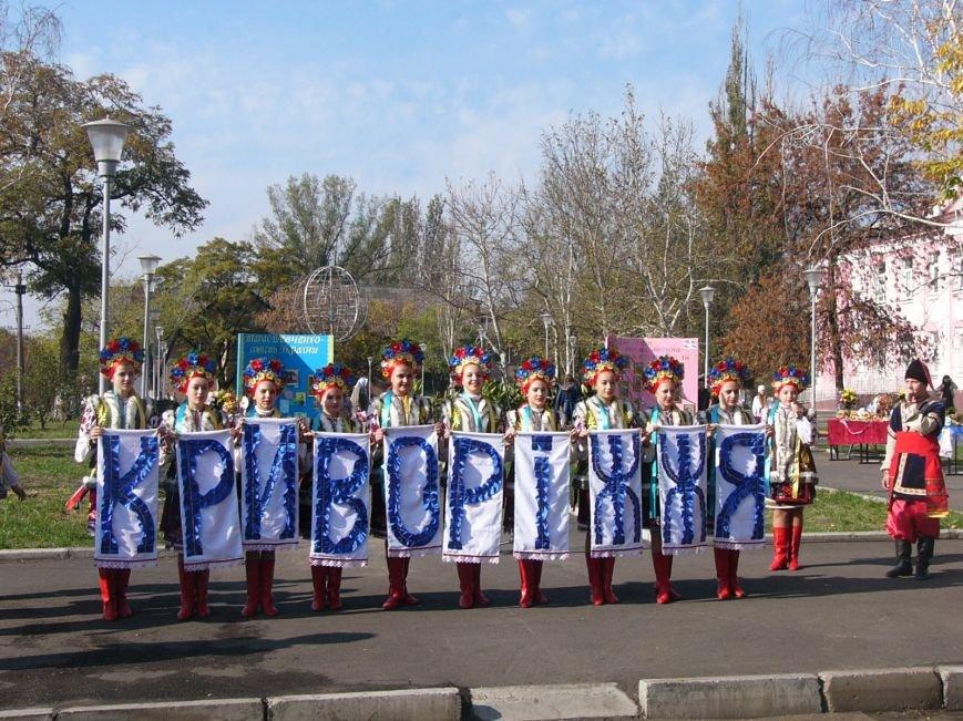 Криворожане определились с тем, кого считать единым кандидатом от Кривбасса, фото-2