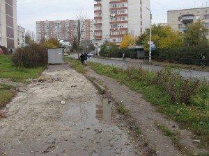 У Тернополі біля зупинки вже півроку лежить купа сухих гілячок (ФОТО), фото-2