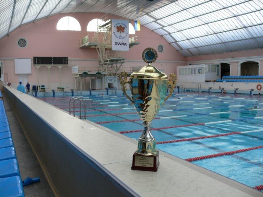 Черниговские пловцы-ветераны завоевали Кубок Киева, фото-4