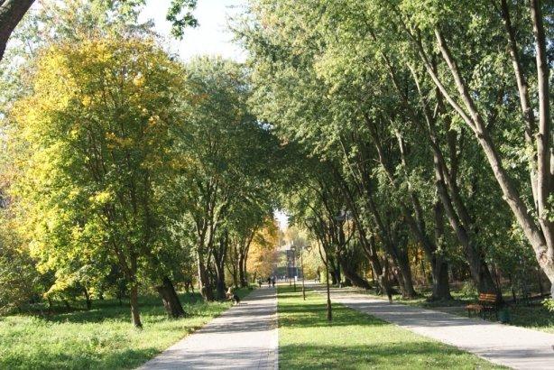 В тернопільському парку ремонтують алею, яку збудували майже 30 років тому (фото), фото-2
