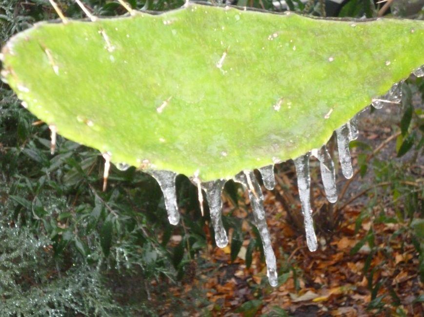 Кривой Рог накрыл ледяной шторм: испытание экстримом (ФОТО), фото-9