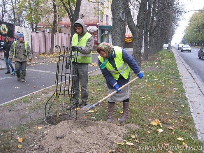 У Рівному в'їзд до колишньої тюрми засадили деревами (Фото), фото-1