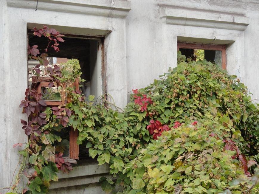 Фотопятница: Мариупольские дома-призраки. История исчезновения, фото-4
