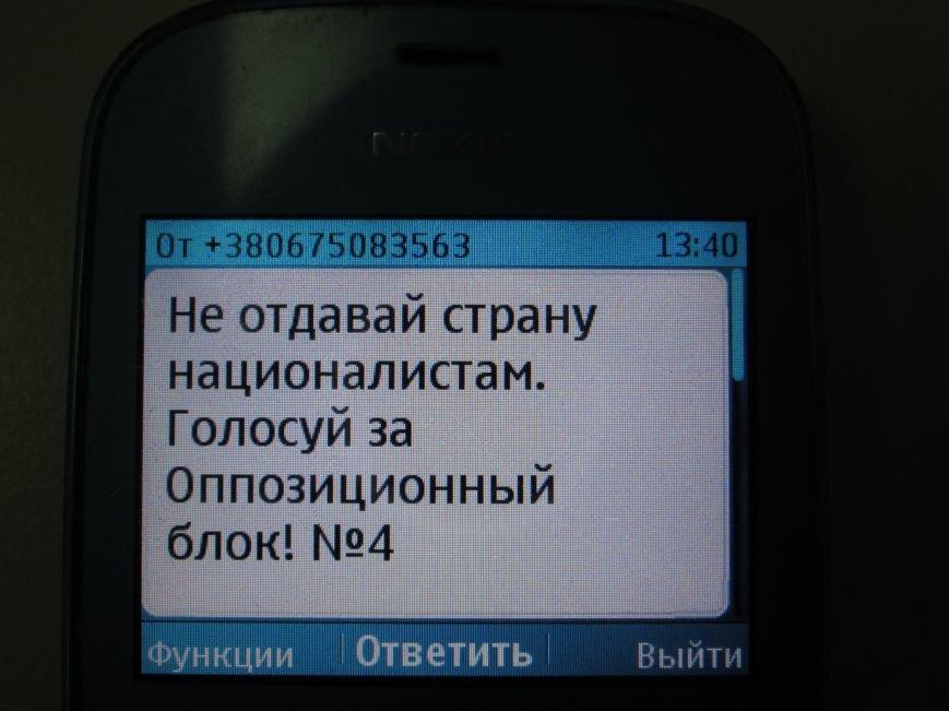 ВЫБОРЫ-2014: выбираем будущее Украины, фото-10