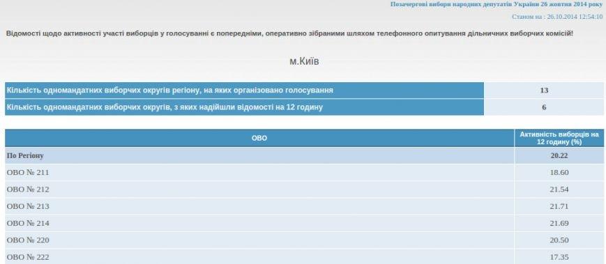 В Киеве уже более 20% избирателей приняли участие в выборах, фото-1