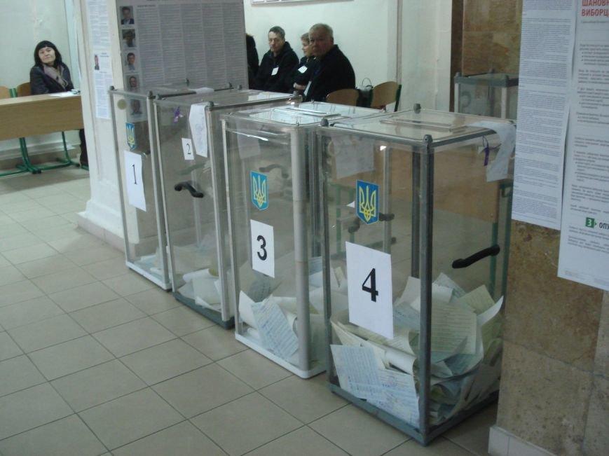 выборывыборы6