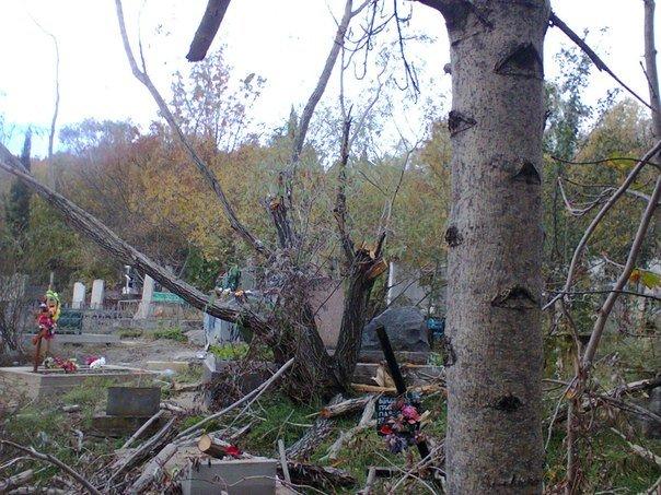 Свалка на Ялтинском кладбище или субботник наоборот, фото-1