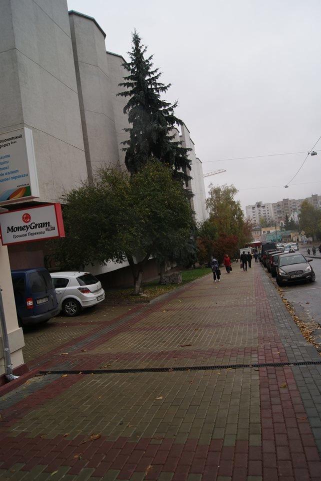 Комунальники роблять Тернопіль яскравішим (фото), фото-2