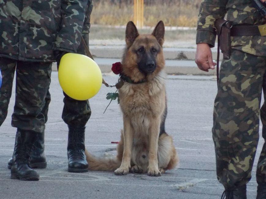 Как встречали 20-й мотопехотный батальон под Днепропетровском (ФОТОРЕПОРТАЖ), фото-6
