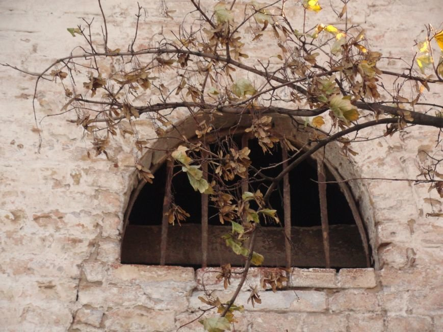 Фотопятница «Окна родного города», фото-48