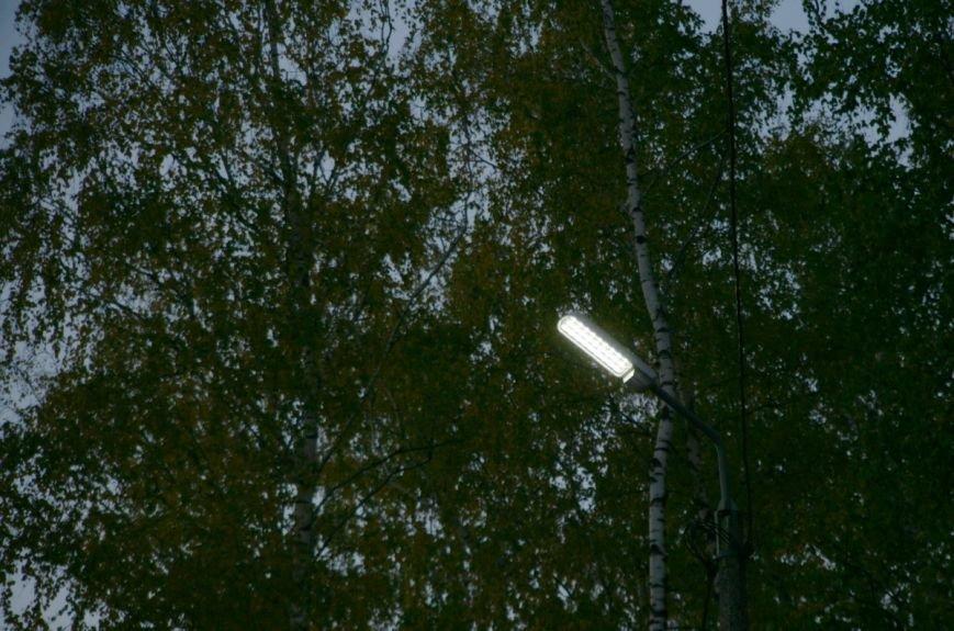 Биатлонная трасса в Чернигове получила освещение, фото-5