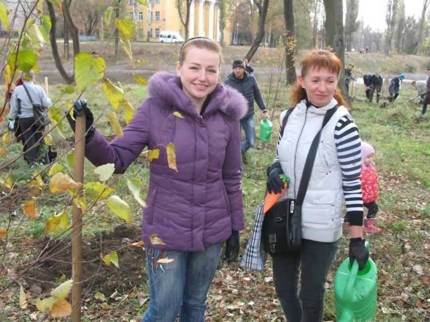 На центральной аллее парка «Правды» криворожане высадили 400 саженцев берез (ФОТО, ВИДЕО), фото-4