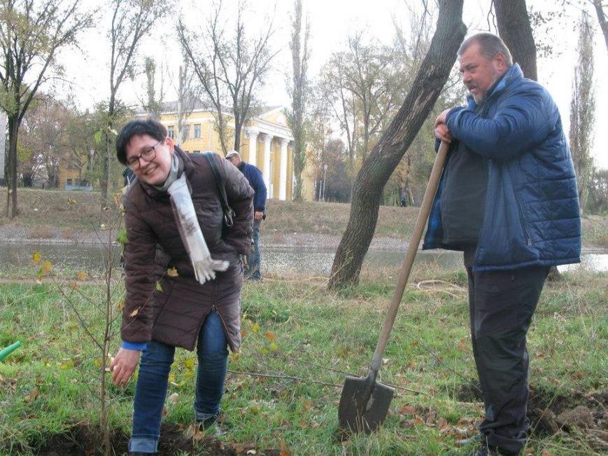 На центральной аллее парка «Правды» криворожане высадили 400 саженцев берез (ФОТО, ВИДЕО), фото-3