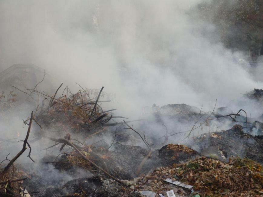 В Кривом Роге сухие листья сжигают прямо во дворах (ФОТОФАКТ), фото-3