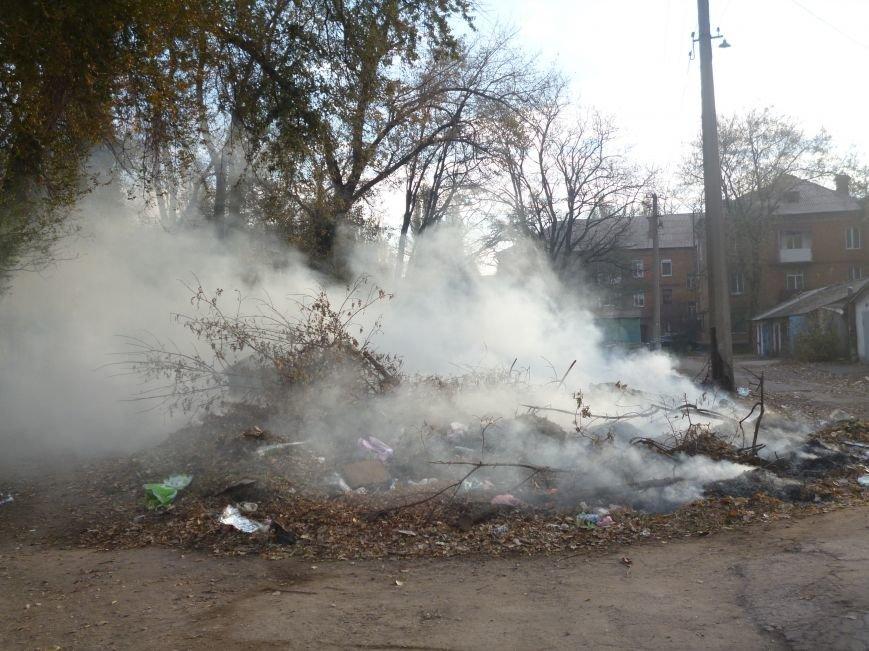 В Кривом Роге сухие листья сжигают прямо во дворах (ФОТОФАКТ), фото-1