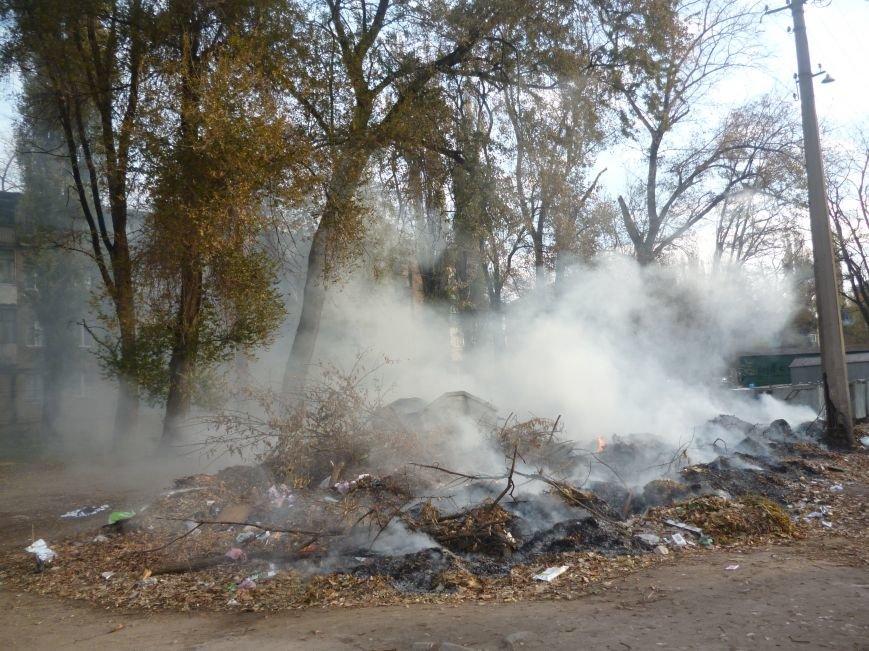 В Кривом Роге сухие листья сжигают прямо во дворах (ФОТОФАКТ), фото-2