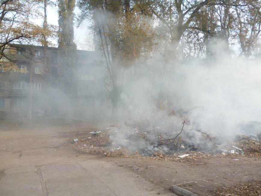 В Кривом Роге сухие листья сжигают прямо во дворах (ФОТОФАКТ), фото-4