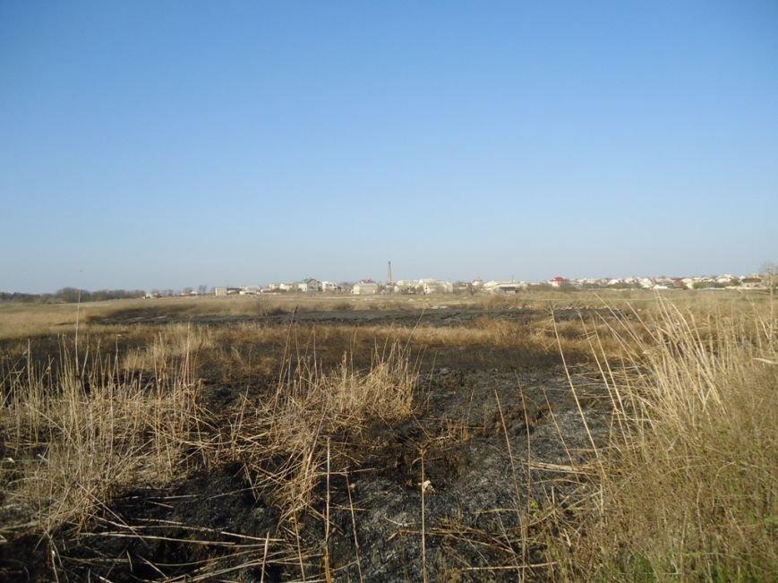 Ликвидировано возгорание на неработающих прудах очистных сооружений в Херсоне, фото-2