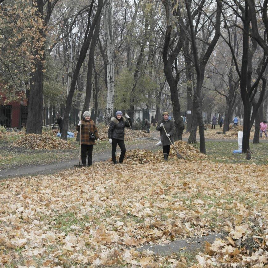 В Красноармейске провели генеральную уборку, фото-9