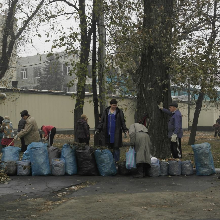 В Красноармейске провели генеральную уборку, фото-3
