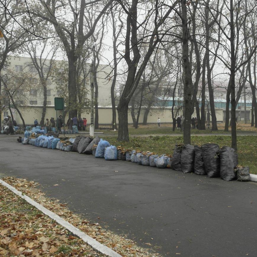 В Красноармейске провели генеральную уборку, фото-2