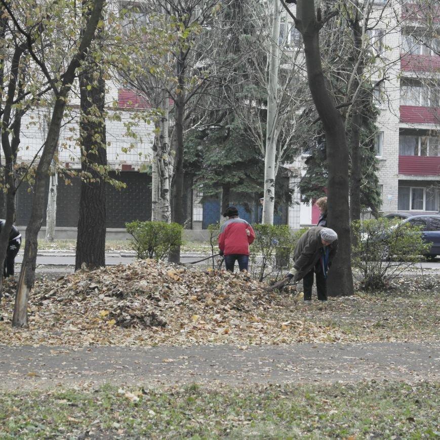 В Красноармейске провели генеральную уборку, фото-18