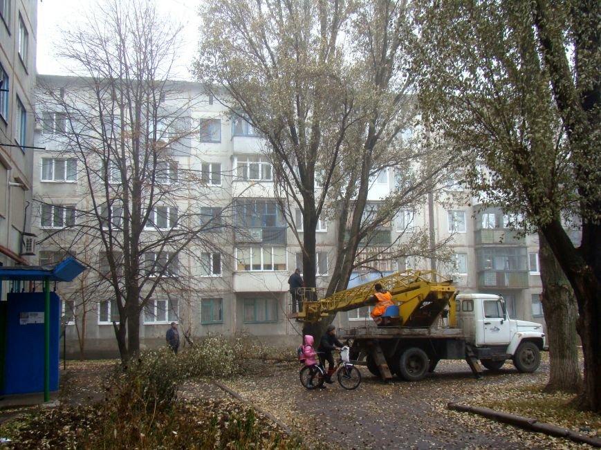 Благодаря Красноармейскому депутату Олегу Подлесному аварийных деревьев в поселке динзавода стало меньше, фото-2