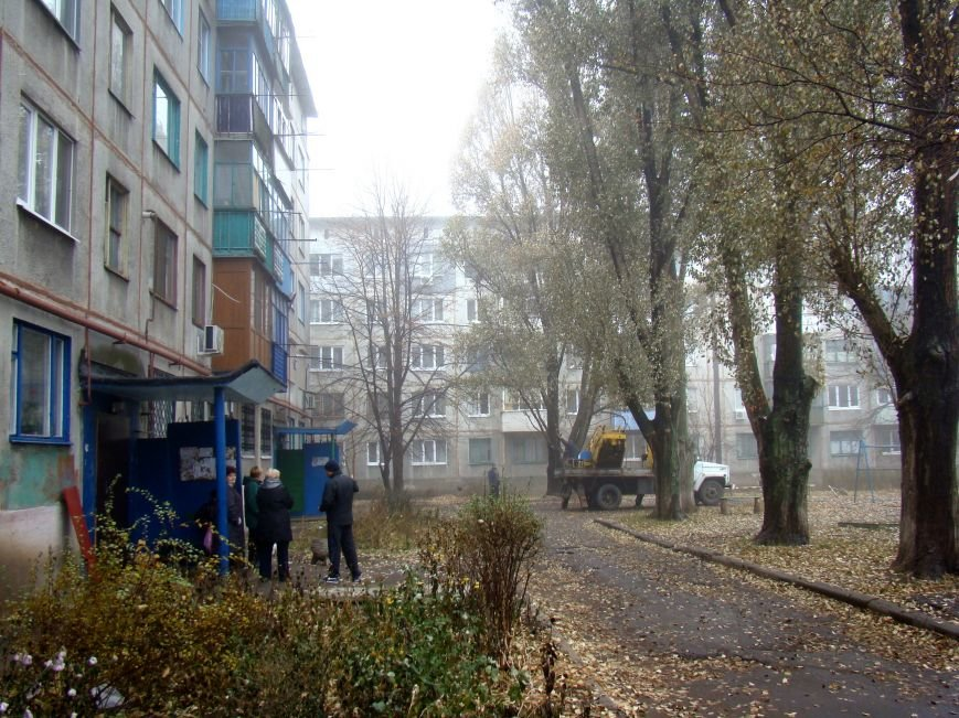Благодаря Красноармейскому депутату Олегу Подлесному аварийных деревьев в поселке динзавода стало меньше, фото-1