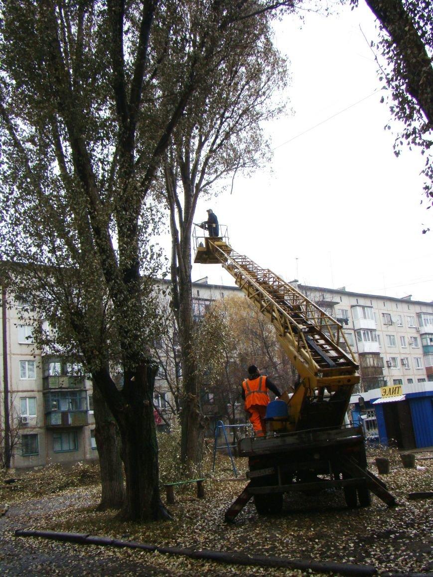 Благодаря Красноармейскому депутату Олегу Подлесному аварийных деревьев в поселке динзавода стало меньше, фото-6