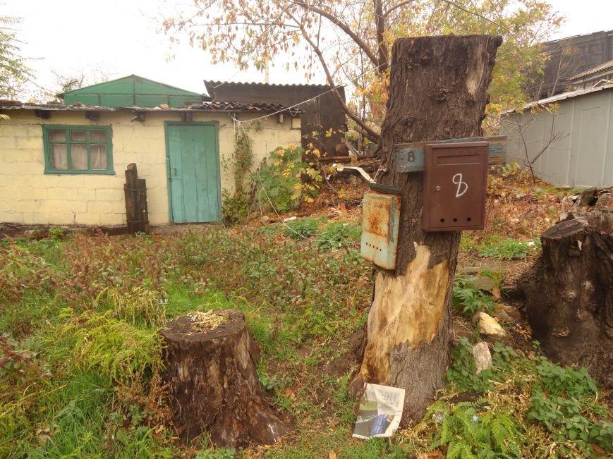 Фотопятница: «Почтовый ящик - раритет века интернет-почты», фото-10