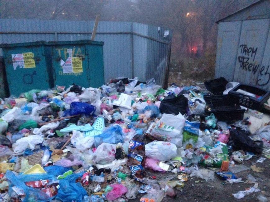 В Мариуполе нерадивые жильцы и коммунальники не доносят мусор до контейнеров (ФОТО), фото-3