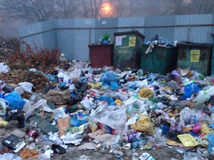 В Мариуполе нерадивые жильцы и коммунальники не доносят мусор до контейнеров (ФОТО), фото-2