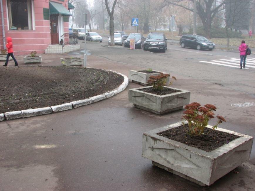 В Чернигове все же появится настоящая пешеходная улица - Сережникова, фото-2