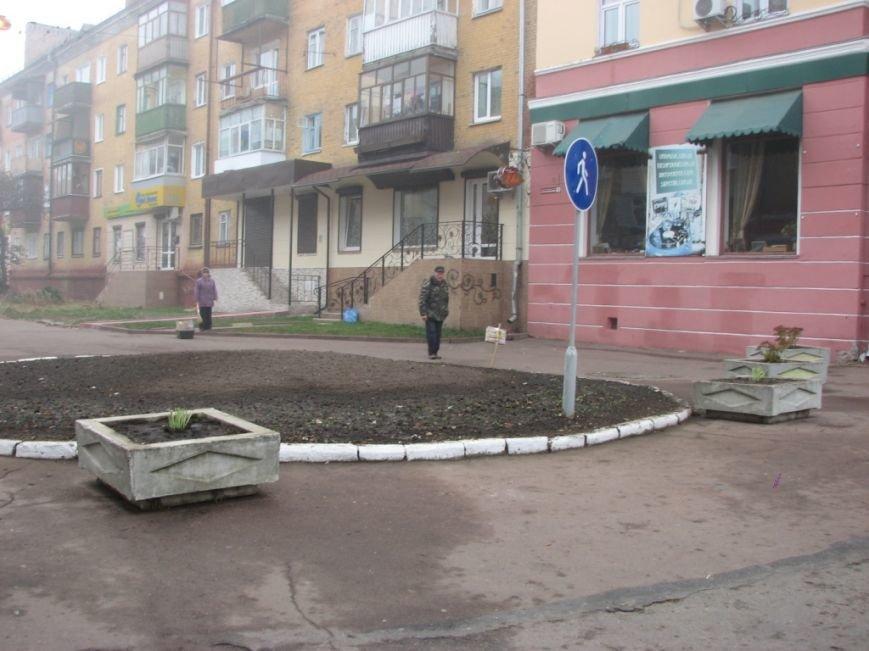 В Чернигове все же появится настоящая пешеходная улица - Сережникова, фото-3