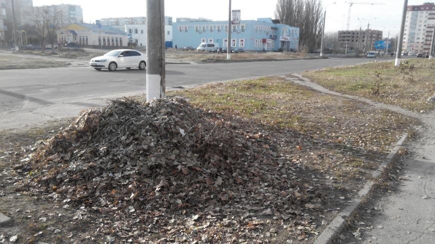 Мэр Сум требует  убрать опавшую листву в городе (ФОТО), фото-1