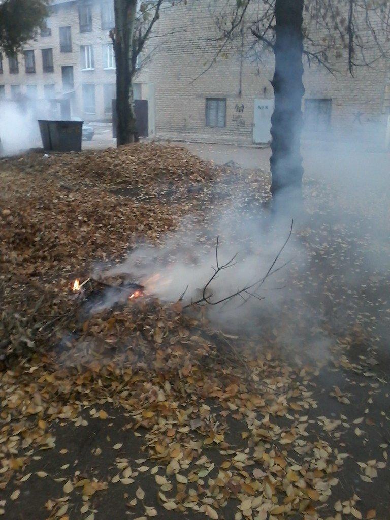 «Забота» о здоровье больных в Красноармейске – костры и дым на территории больницы, фото-4