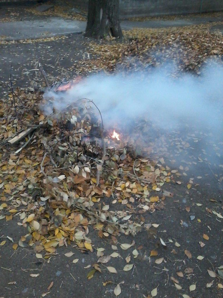 «Забота» о здоровье больных в Красноармейске – костры и дым на территории больницы, фото-3