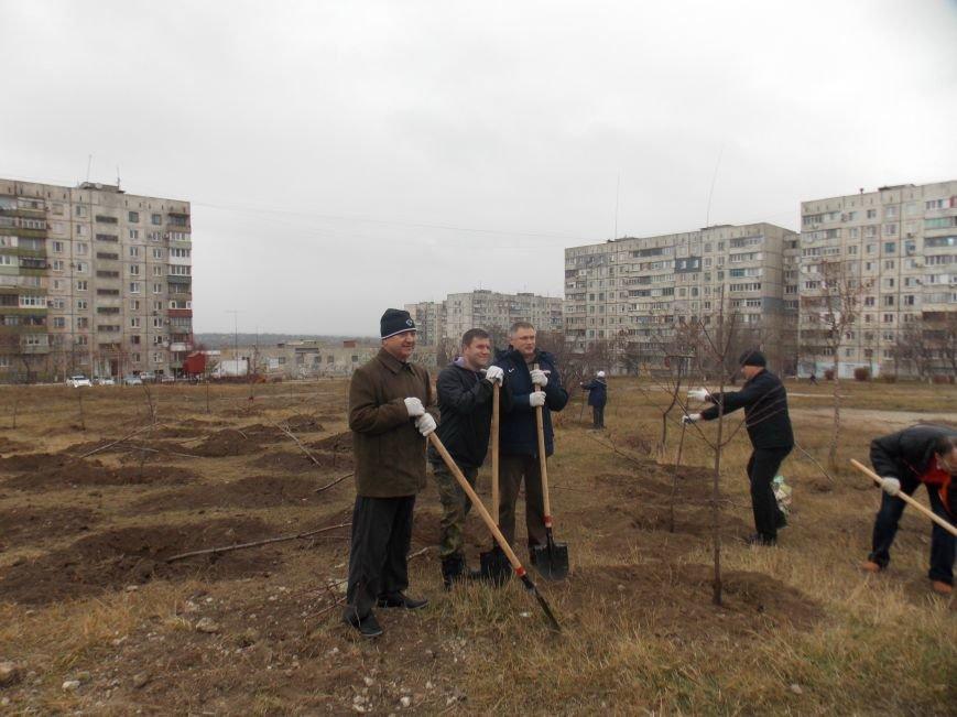 В Мариуполе городской голова принял участие в субботнике и посадил клены (ФОТОРЕПОРТАЖ), фото-5