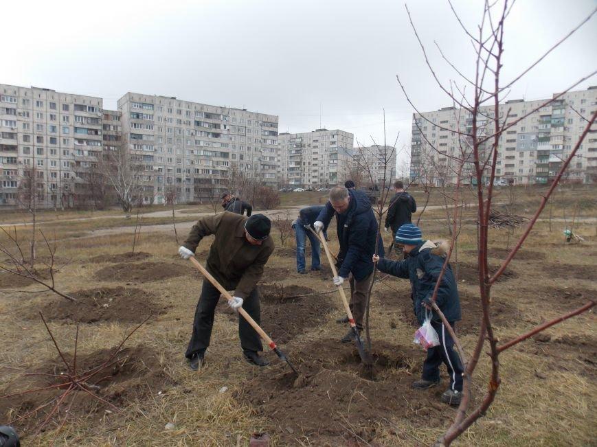 В Мариуполе городской голова принял участие в субботнике и посадил клены (ФОТОРЕПОРТАЖ), фото-3