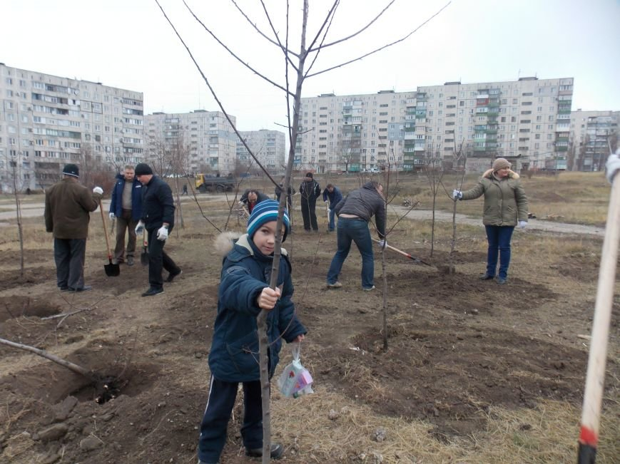 В Мариуполе городской голова принял участие в субботнике и посадил клены (ФОТОРЕПОРТАЖ), фото-2