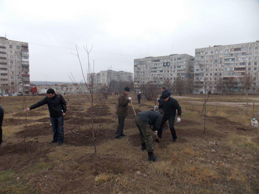 В Мариуполе городской голова принял участие в субботнике и посадил клены (ФОТОРЕПОРТАЖ), фото-6