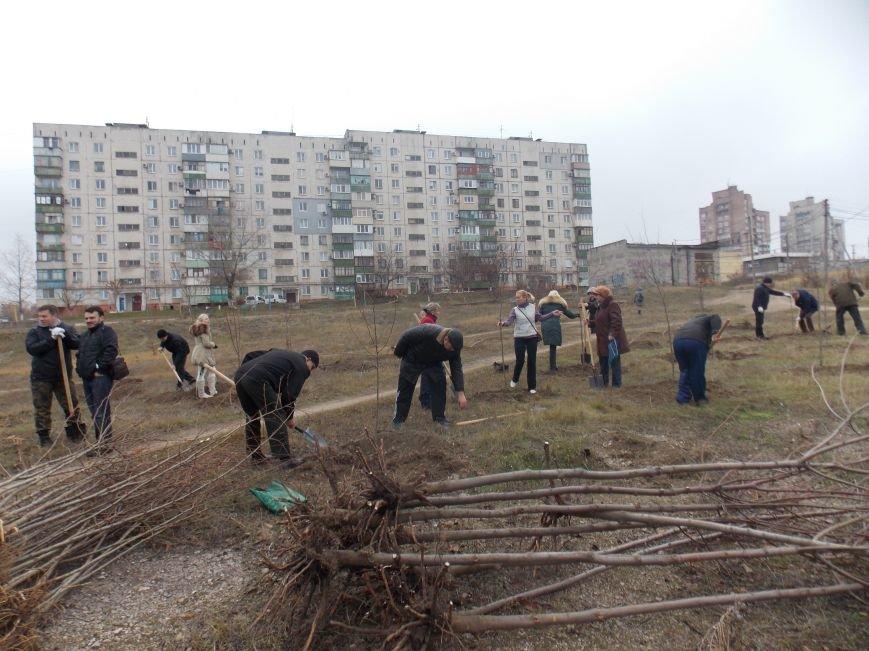 В Мариуполе городской голова принял участие в субботнике и посадил клены (ФОТОРЕПОРТАЖ), фото-11