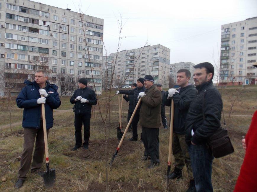 В Мариуполе городской голова принял участие в субботнике и посадил клены (ФОТОРЕПОРТАЖ), фото-1