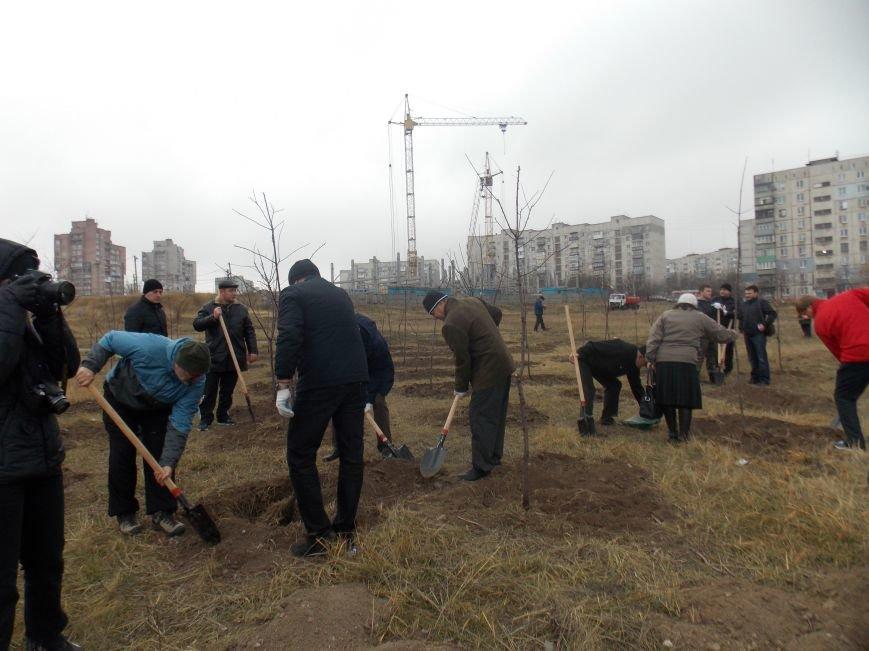 В Мариуполе городской голова принял участие в субботнике и посадил клены (ФОТОРЕПОРТАЖ), фото-10