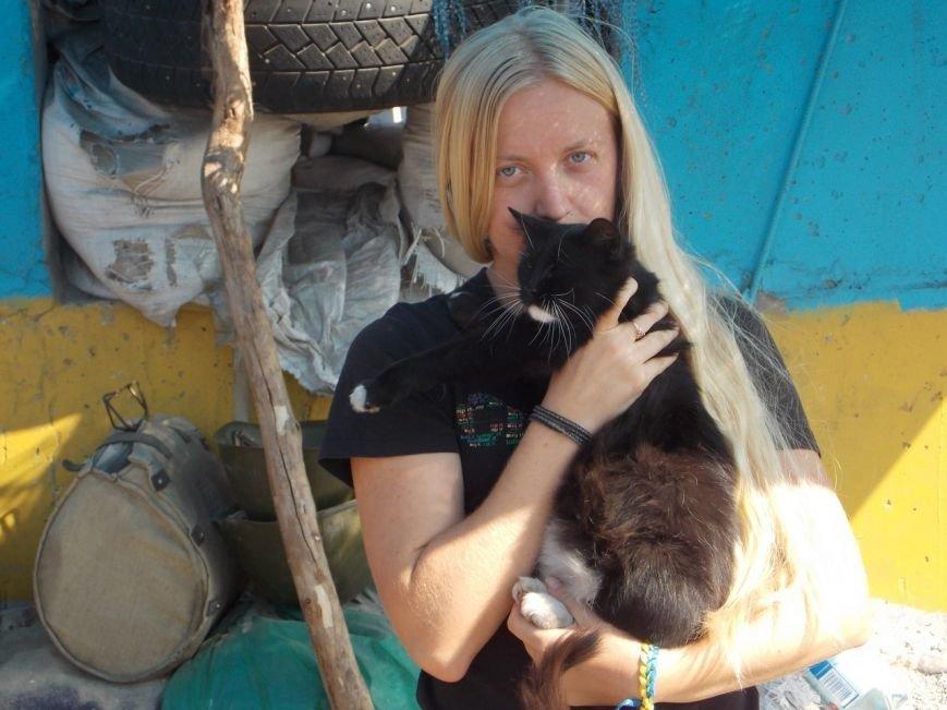 Кошка из запорожского блок-поста ищет дом (ФОТО), фото-1