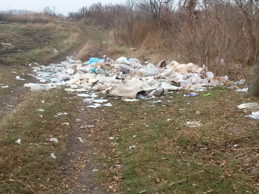 В Сумах неизвестные устроили стихийную свалку из «сладкого» мусора (ФОТО). ОБНОВЛЕНО, фото-1