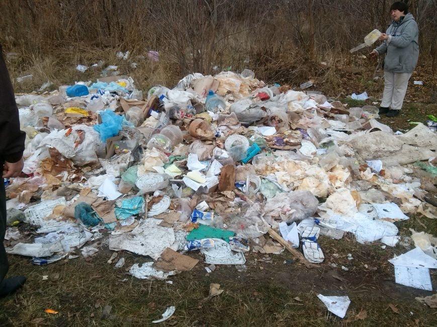 В Сумах неизвестные устроили стихийную свалку из «сладкого» мусора (ФОТО). ОБНОВЛЕНО, фото-2
