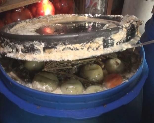 В Запорожье накрыли подпольный цех по изготовлению консервации (ФОТО), фото-2