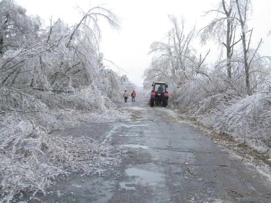 В Запорожской области обледеневшие деревья попадали на дороги (ФОТО), фото-4