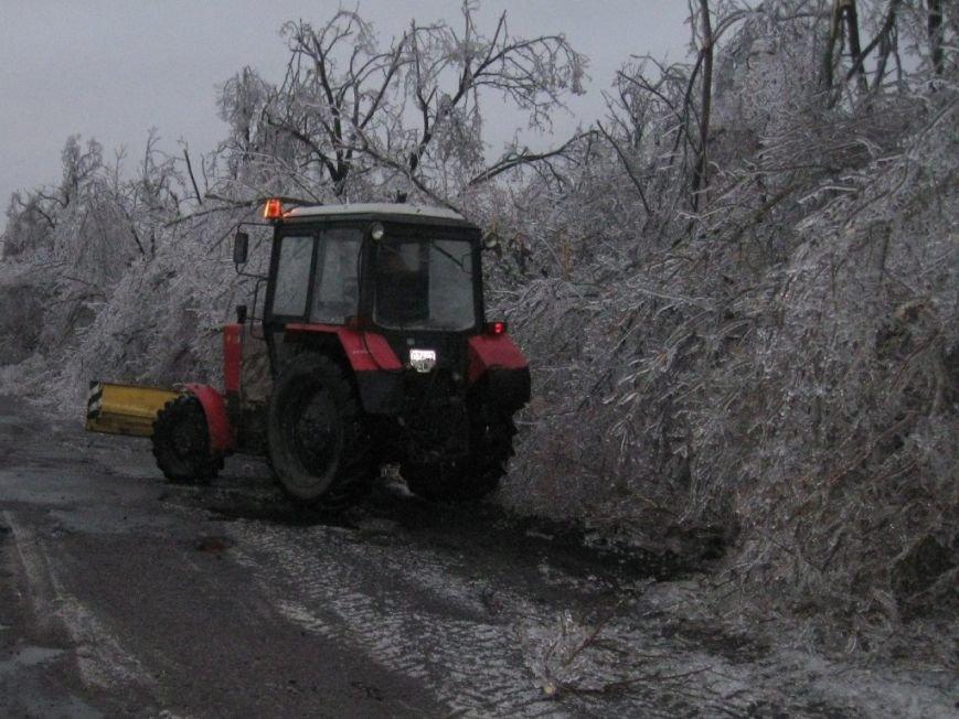 В Запорожской области обледеневшие деревья попадали на дороги (ФОТО), фото-5